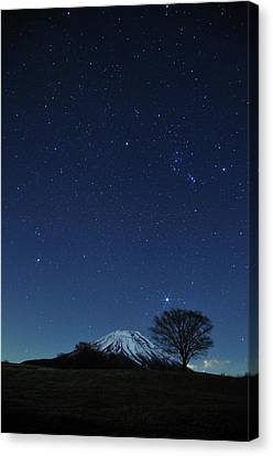 Mt.fuji In Winter Canvas Print by Takeshi.K