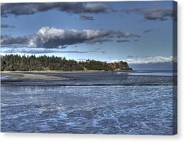 Mud Bay  Canvas Print by Michele Cornelius