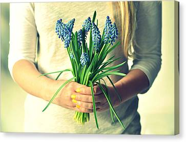 Muscari In Womans Hands Canvas Print