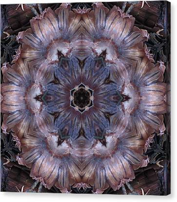 Mushroom With Blue Center Canvas Print by Trina Stephenson