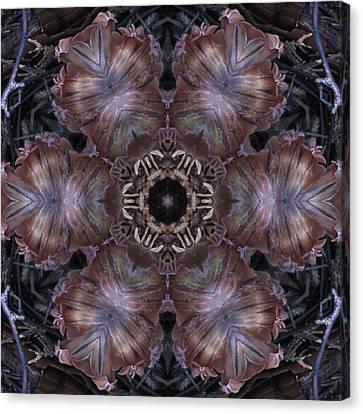 Mushroom With Brown Center Canvas Print by Trina Stephenson