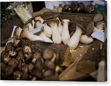 Mushrooms At The Market Canvas Print by Heather Applegate