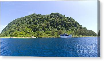 Mv Spirit Of Solomons Moored In Front Canvas Print by Steve Jones
