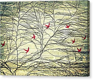 My Beautiful Patios Wall IIi Canvas Print