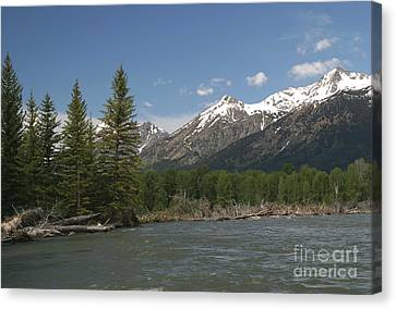 My Favorite Of The Grand Tetons Canvas Print by Living Color Photography Lorraine Lynch