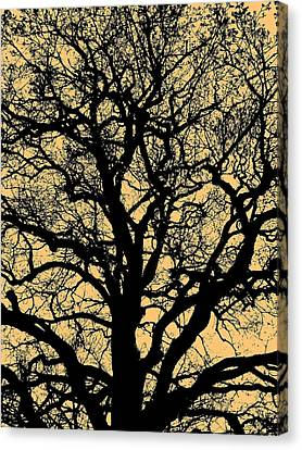 My Friend - The Tree ... Canvas Print by Juergen Weiss