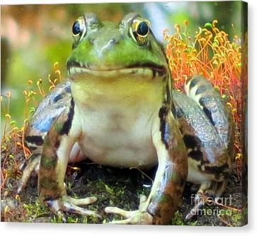 My Frog Friend Canvas Print by Patricia Januszkiewicz