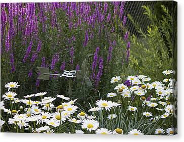 My Garden 1 Canvas Print
