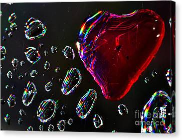 Canvas Print featuring the photograph My Heart by Sylvie Leandre