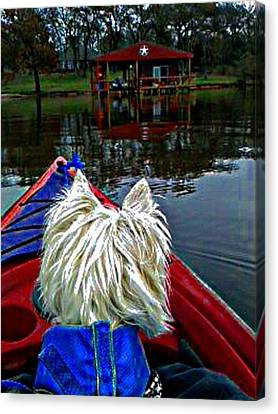 My Kayaker Buddie Canvas Print by Carrie OBrien Sibley