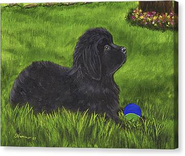 My New Ball Canvas Print by Sharon Nummer