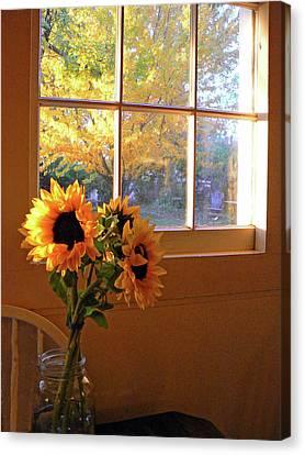 My Sisters Kitchen Window Canvas Print by Pamela Patch