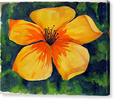 Mysterious Yellow Flower Canvas Print by Debi Singer