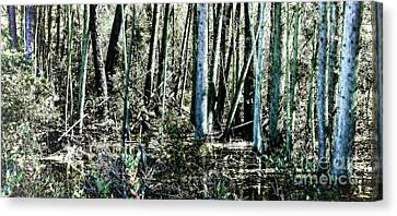 Mystery Forest Canvas Print by Olivier Le Queinec