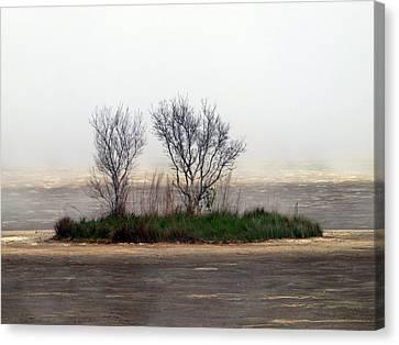 Mystery Island Canvas Print by Kim Schmidt