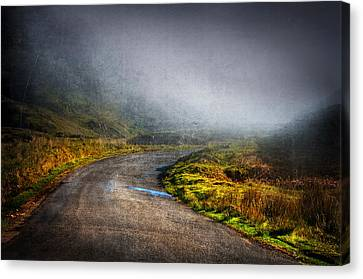 Mystery Road  Canvas Print by Svetlana Sewell