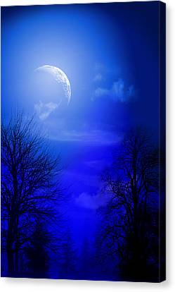 Graphic Digital Art Canvas Print - Mystic Night by Mark Ashkenazi