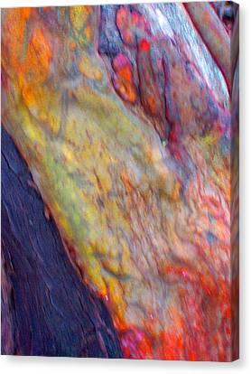 Canvas Print featuring the digital art Mystics Of The Night by Richard Laeton