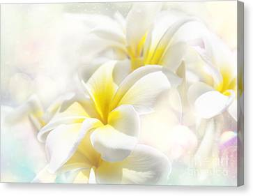 Na Lei Pua Melia Aloha E Ko Lele - Yellow Tropical Plumeria Maui Canvas Print by Sharon Mau