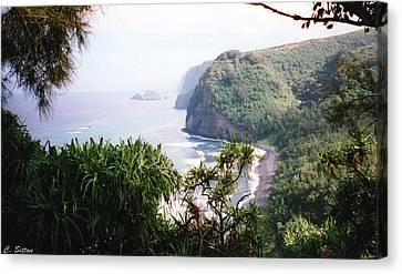 Canvas Print featuring the photograph Na Pali Hike by C Sitton