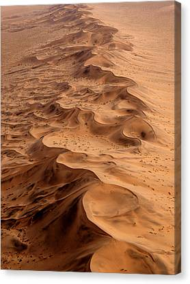 Namibia Aerial Canvas Print by Nina Papiorek