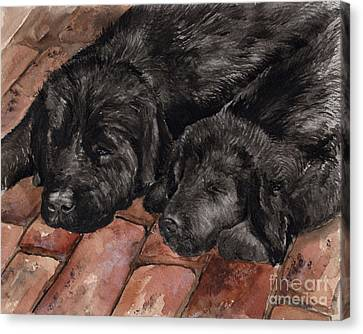 Canvas Print featuring the painting Nap Time by Nancy Patterson