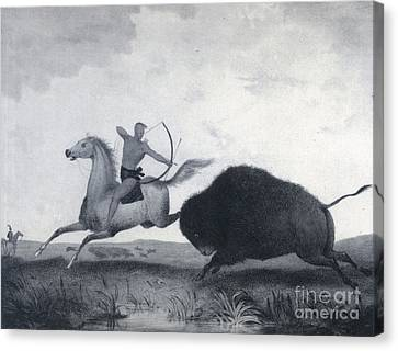 Native American Indian Buffalo Hunting Canvas Print