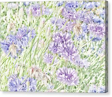 Natural Beauty Canvas Print by Bonnie Bruno
