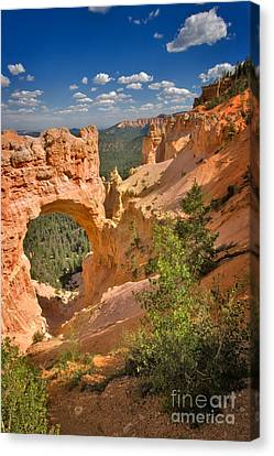 Natural Bridge In Bryce Canyon National Park Canvas Print by Louise Heusinkveld
