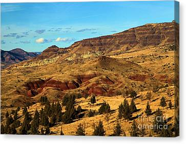 Natural Paint Canvas Print by Adam Jewell