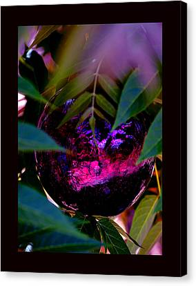 Canvas Print featuring the photograph Natural Transcendence by Susanne Still