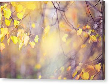 Natural Watercolor Of Autumn Canvas Print by Jenny Rainbow