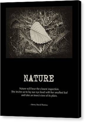 Nature Canvas Print by Bonnie Bruno