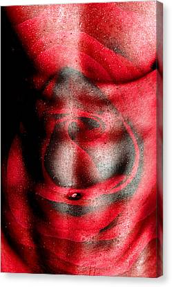 Nature In Red  Canvas Print by Mark Ashkenazi