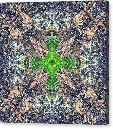 Nature Mandala Canvas Print by Stelios Kleanthous