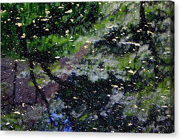 Natures Abstract Canvas Print by Deborah  Crew-Johnson