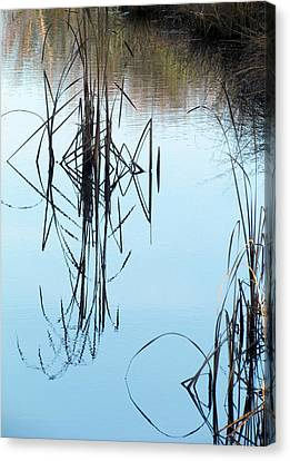 Canvas Print featuring the photograph Nature's Art by I'ina Van Lawick