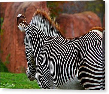 Nature's Barcode Canvas Print by Davandra Cribbie