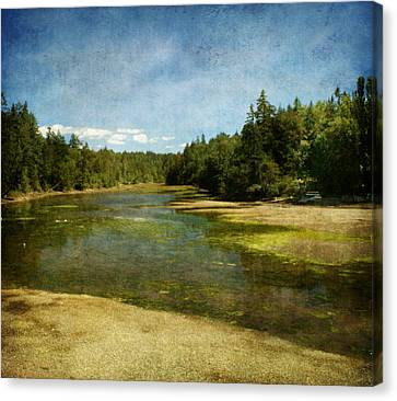 Natures Beauty Canvas Print by Terrie Taylor