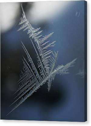 Natures Crystal Canvas Print