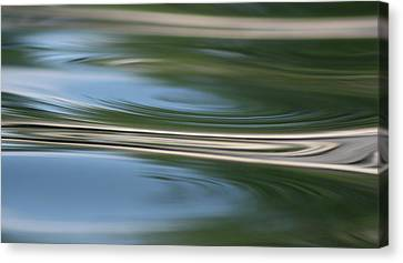 Nature's Reflection Canvas Print