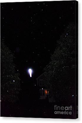 Nature's Rocket Launch Canvas Print