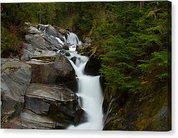 Natures Steps Canvas Print by Robert  Torkomian