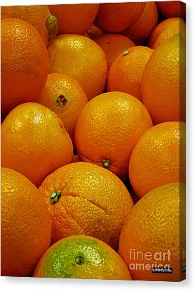 Navel Oranges Canvas Print by Methune Hively