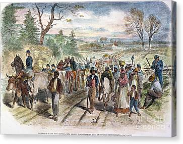Nc: Freed Slaves, 1863 Canvas Print by Granger