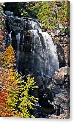 Nc Waterfalls Canvas Print by Ronald Lutz