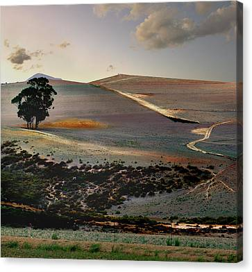 Near Greyton Canvas Print