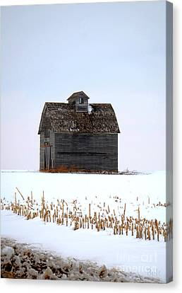 Nebraska Barn In Winter Canvas Print by Christine Belt