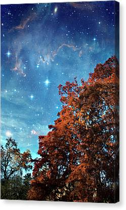Nebula Treescape Canvas Print by Paul Grand Image