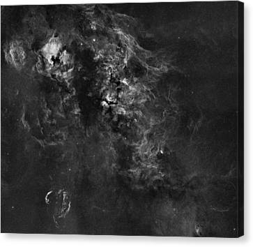 Nebulosity In The Cygnus Constellation Canvas Print by Andre Van der Hoeven